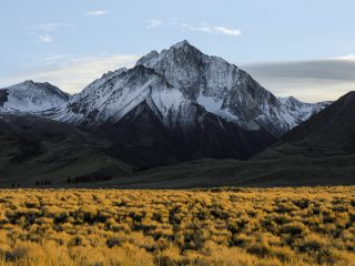 De berg - Jeremy Bishop